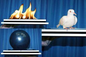 Волшебный лоток - огонь - шарик - голубь